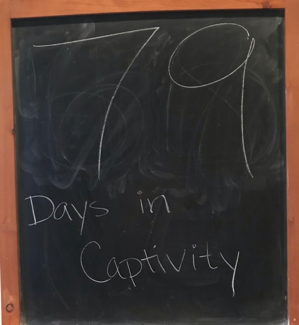 79 days in captivity chalkboard